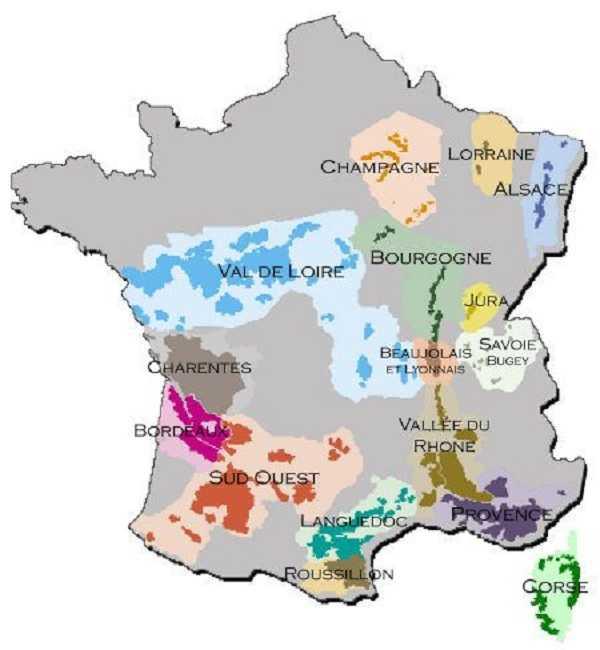Les Principaux cépages de France