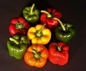 Recette Salade de poivrons colorée à l'huile d'olive