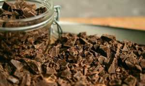 Tout sur le chocolat