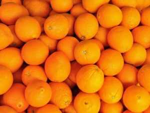 Orange Corse