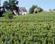 Vin de Jasnières