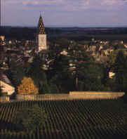 Vin de Nuits Saint-Georges
