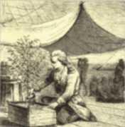 café en 1720