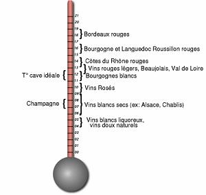 thermometre du vin