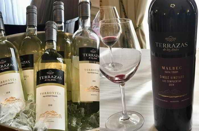Bodega Terrazas vins Torrontes et Malbec