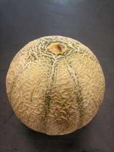 Ingrédients assiette melon et jambon de parme - melon cantaloup