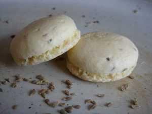 Recette Petits gâteaux à l'anis (anisbreedle)