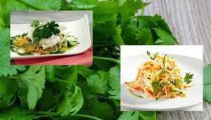 Filet de Sole roulé et sa julienne de légumes