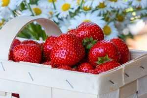 Recette Cristalline de fruits rouges et noirs au jus de fraises