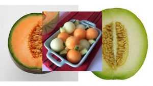 Recette Salade de Melons au pastis