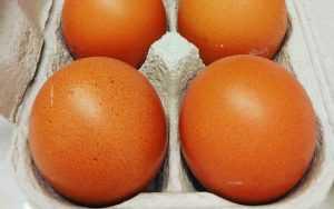 Recette Omelette à l'ail succulente et rapide