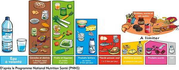 7 groupes d'aliments