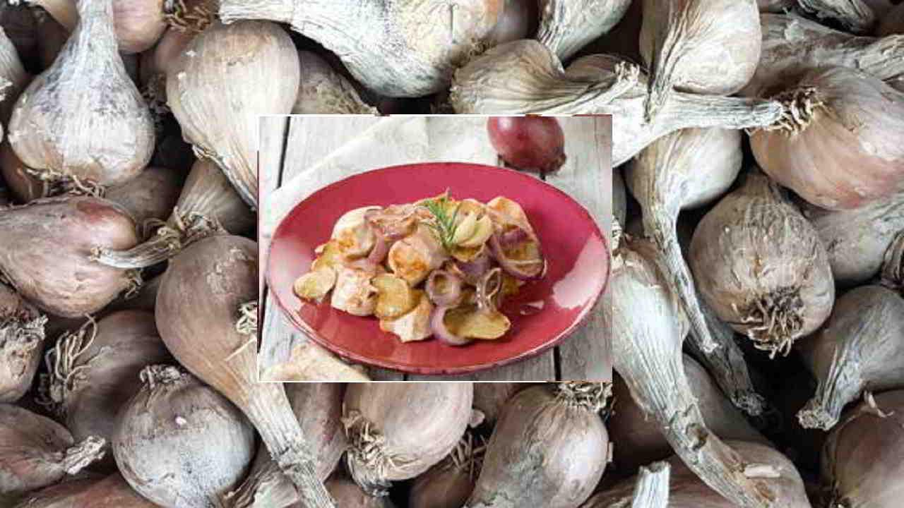 Fricassée de poulet à l'ail noir et l'échalote grise